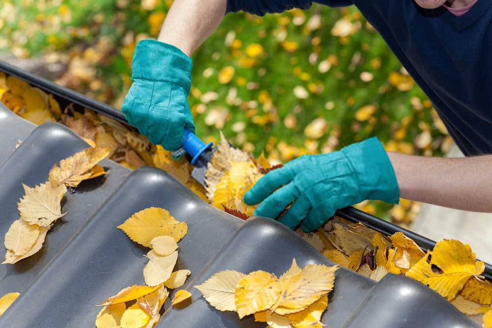 gutter cleaning sonoma county